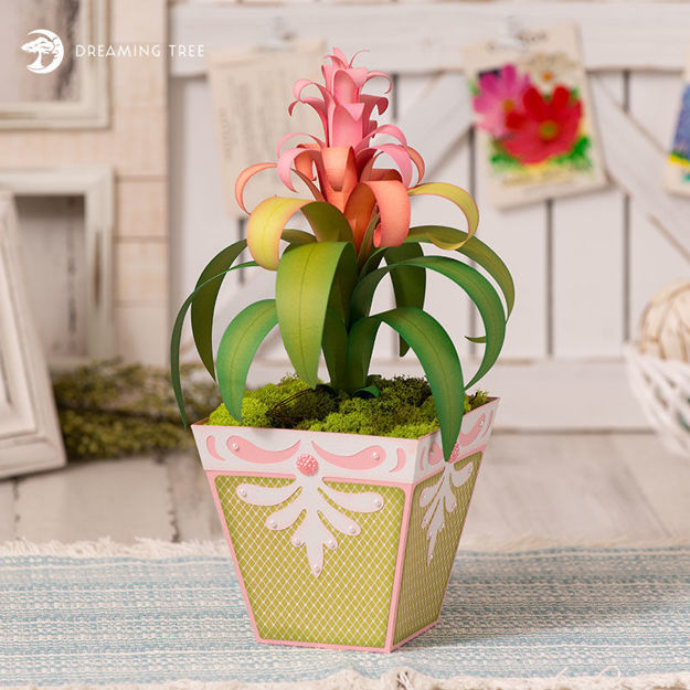 Picture of Bromeliad Planter SVG