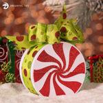 Christmas Peppermint Gift Box